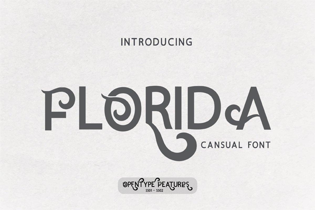 Florida example image 1