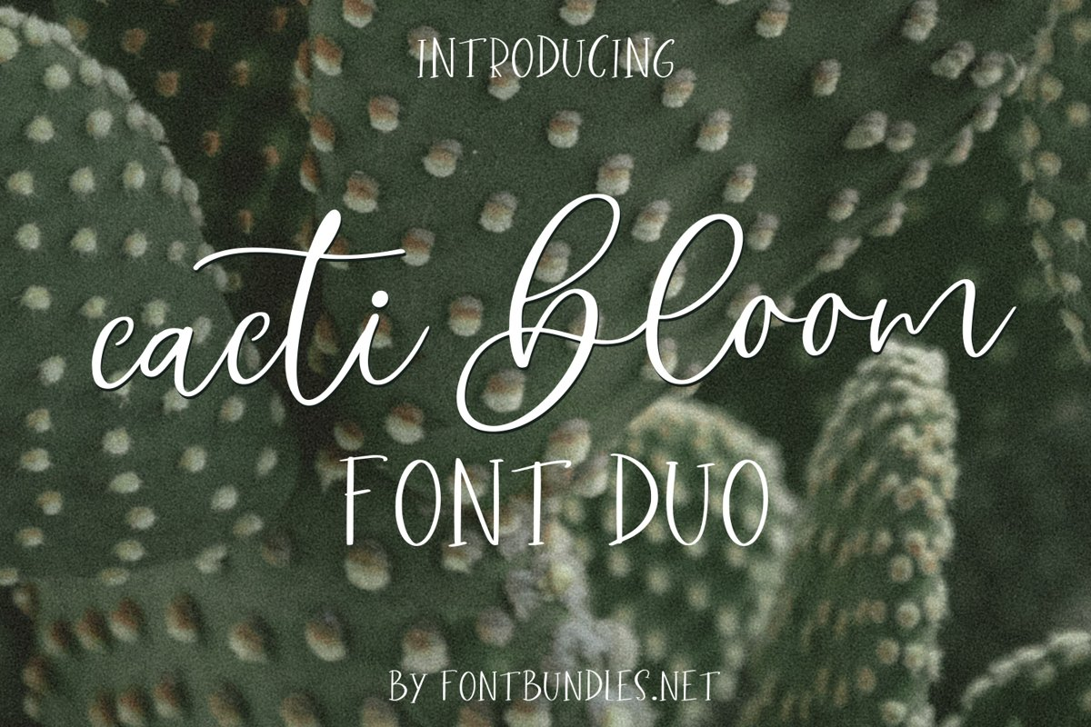 Cacti Bloom Font Duo example image 1