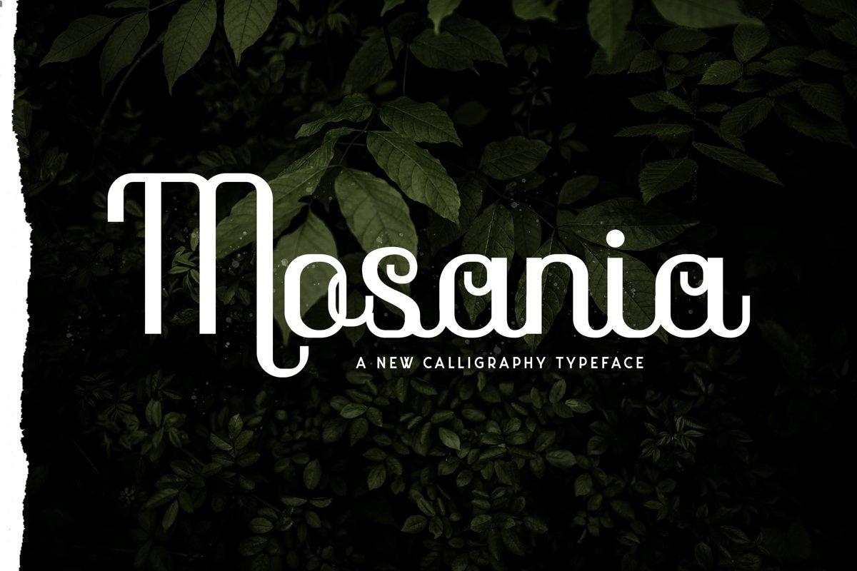 Mosaina example image 1