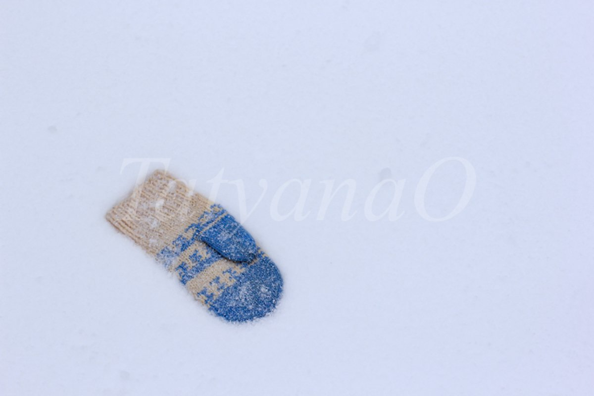 The concept of wintertime, holidays. example image 1