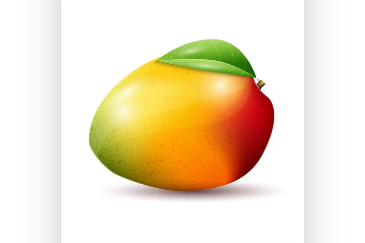 Mango on white background example image 1