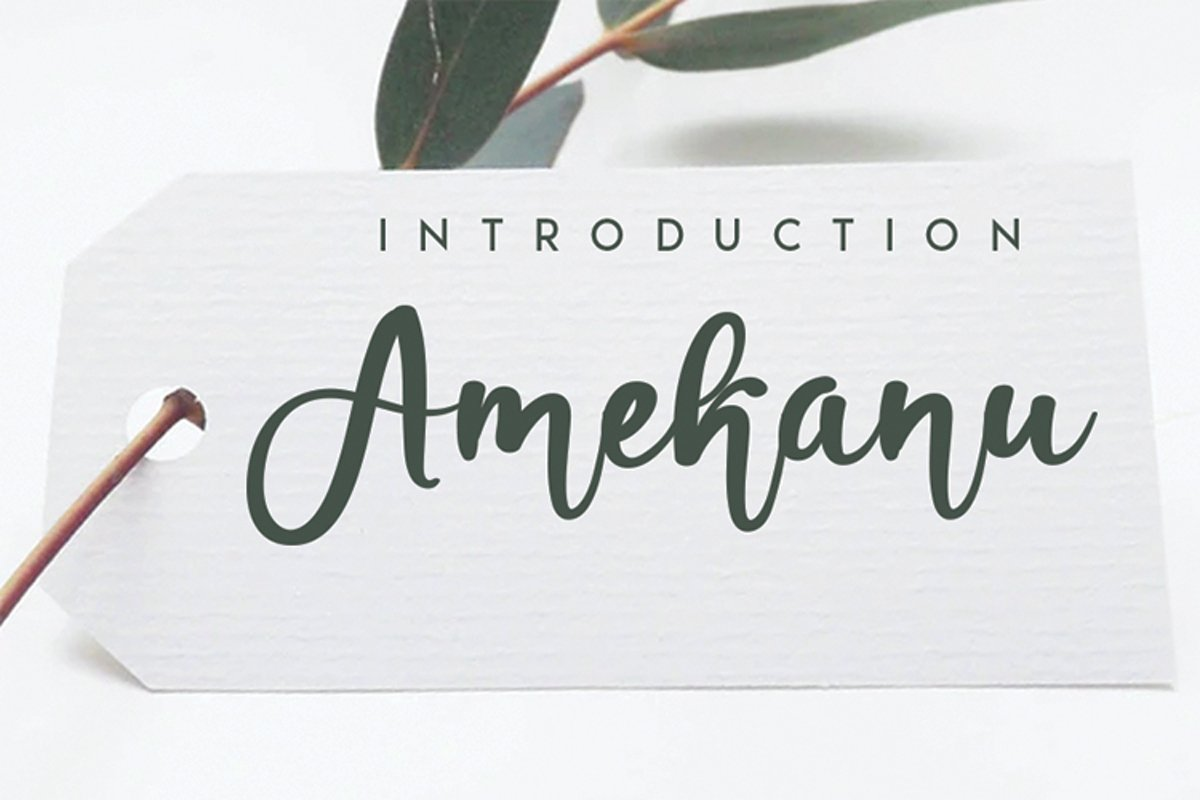 Amekanu example image 1