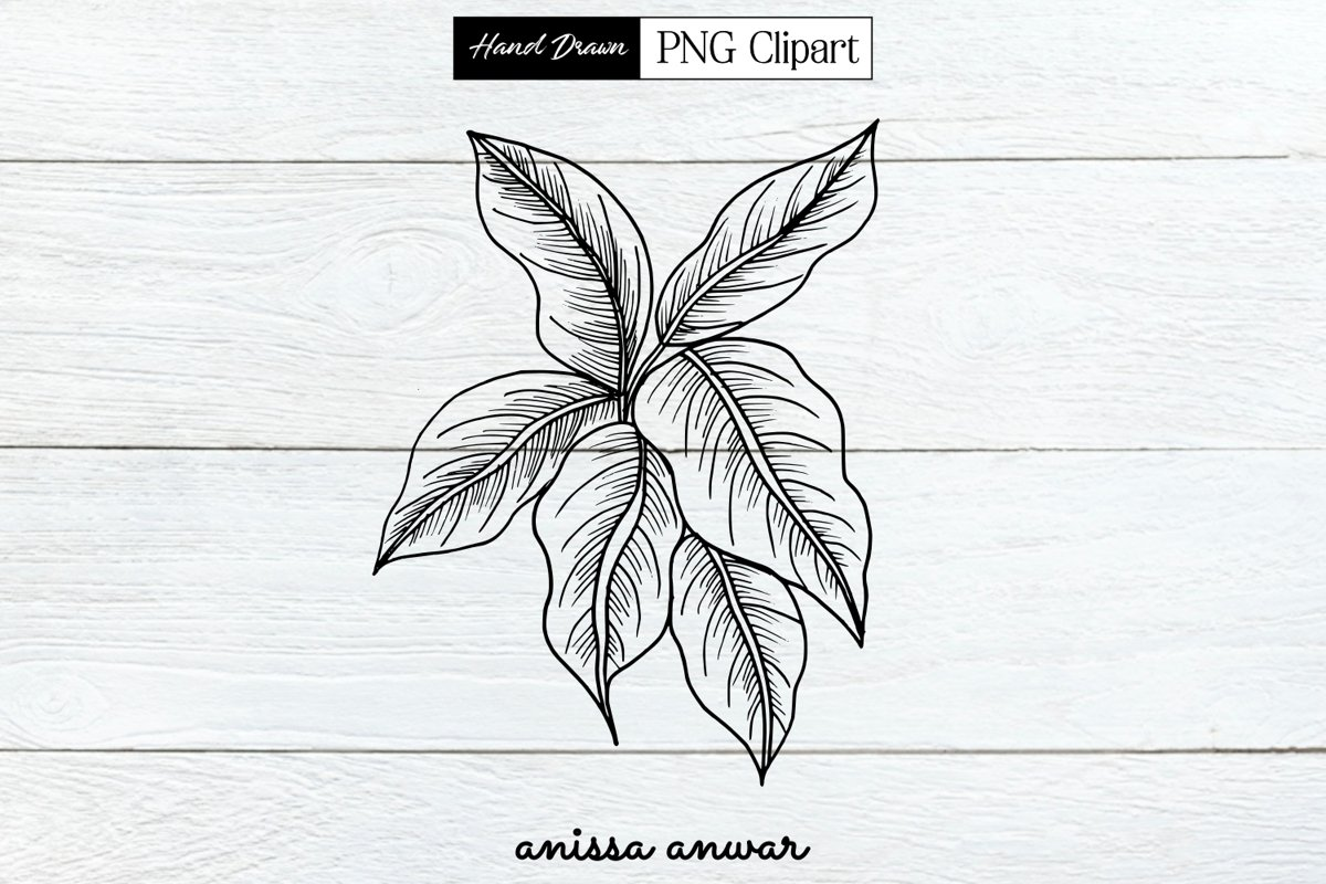 Leaves Line Art Png Clipart Sublimation Printables example image 1
