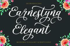 Earnestyna Elegant Product Image 1