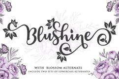 Blushine Script Product Image 1