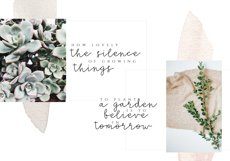 Silence - Delicate Script Font Product Image 3