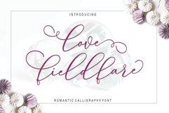 Love Fieldfare Script Product Image 2