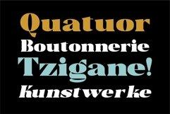 Trellis -Typeface Bold Serif Product Image 6