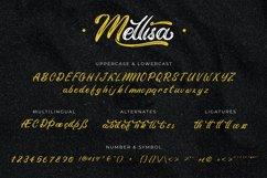 Mellisa | Modern Brush Product Image 5