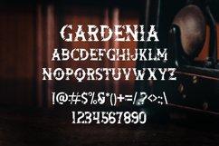 Gardenia Vintage Font Product Image 2