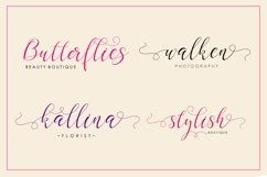 Web Font Gladius Script Product Image 2