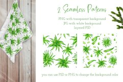 Aloe Vera Clipart. Watercolor Succulent PNG Collection Product Image 5
