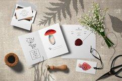 Mushrooms set Product Image 2