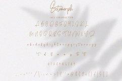 Ectomorph   Elegant Signature Font Product Image 5