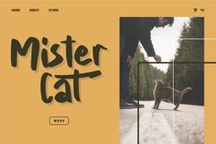Web Font Brody - A Brush Fancy Font Product Image 3