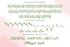 Springbee - Modern Calligraphy Product Image 7