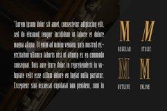 Newston - Stylish Serif Font Product Image 4