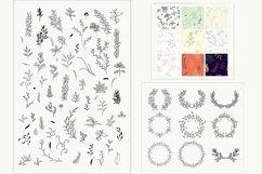80 Botanical elements svg Product Image 2