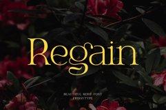 Regain - Beautiful Serif Product Image 1