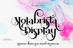 Molabrista Display Product Image 1