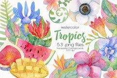 Watercolor Tropics Clipart Product Image 1