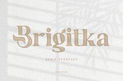 Brigitka Product Image 1