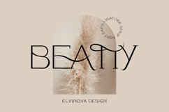 Beatty Modern Classy Font Product Image 1