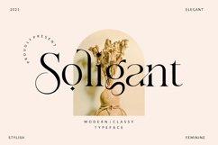 Soligant - Display Serif Font Product Image 1
