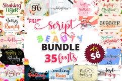Font Bundles - Script in Beauty Product Image 1