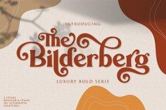 Bilderberg | Luxury Bold Serif Product Image 1