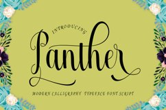 Panther Product Image 1