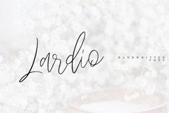 Lardio Product Image 1