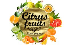 Fruits digital art collection of 10 illustrations Product Image 1