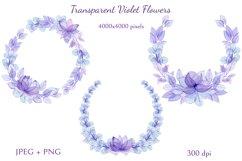Transparent Violet Flowers Product Image 5