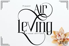 Air Leving Product Image 6
