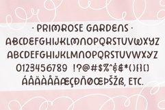 Favorite Fonts Bundle Product Image 5
