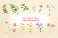 wildflowers watercolor illustrations set Product Image 3