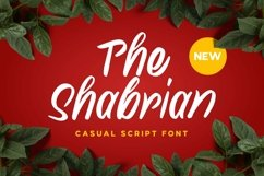 Web Font Shabrian Display Font Product Image 1