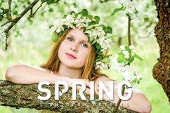 50 Spring Lightroom Presets Product Image 1
