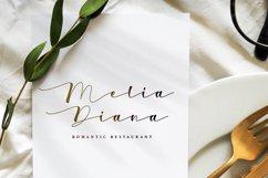 Wedding Script Font - Bianca Eliza Product Image 2