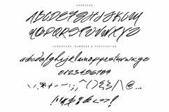 Mr. Roosevelt Handwritten Product Image 6