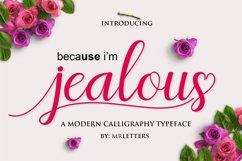 Jealous Script  Product Image 8