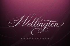 Wellington Script Product Image 1