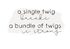 Twigs - A Handwritten Scribble Font Product Image 4