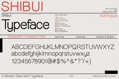 Shibui - Sans Serif font Family Product Image 4