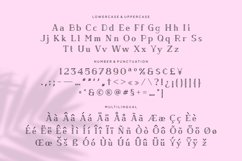 Web Font Charlotte - Crafted Display Font Product Image 2