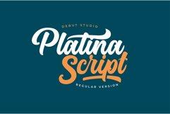 Platina Script / Layered Fonts Product Image 2