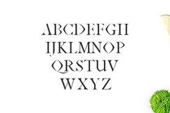 Janecia Serif Typeface Product Image 3