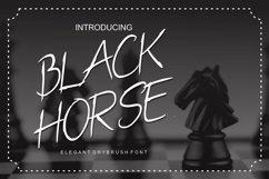 Black Horse Product Image 1