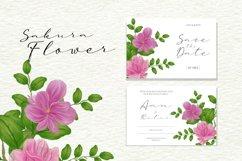 Sakura Flower Watercolour Product Image 4